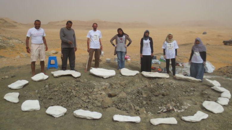 Egyptian Team Fossil
