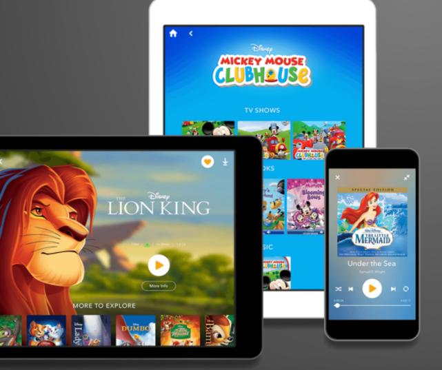 Disney Streaming Service 1